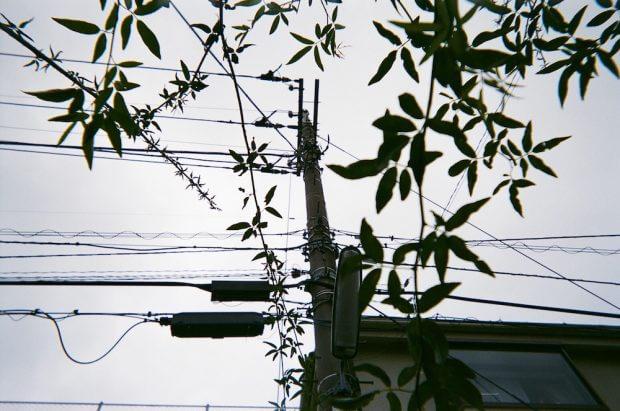 インスタントカメラ14