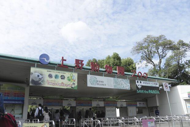 上野動物園 かわいい 写真 インスタ 大学生 フロム・エーしよ