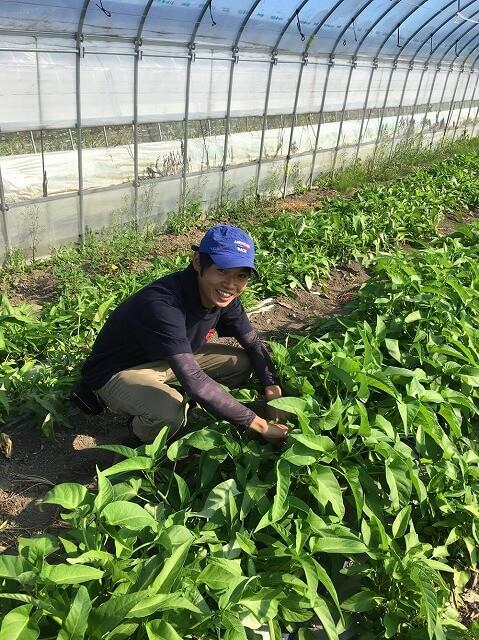 小坂農園代表の小坂幸司さん