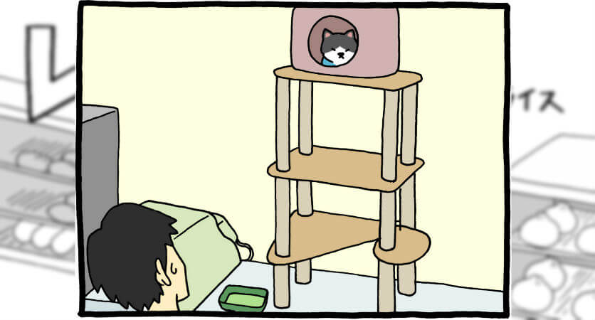【漫画】レジネコ 第14回(作:キューライス)