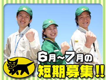 「6月〜7月」の短期募集!!