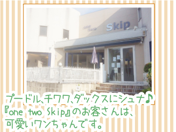 one two Skip (ワンツースキップ)のアルバイト情報