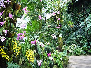 咲くやこの花館のアルバイト情報