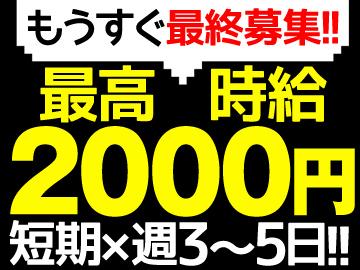 株式会社ピーアンドピー【テンプグループ】のアルバイト情報