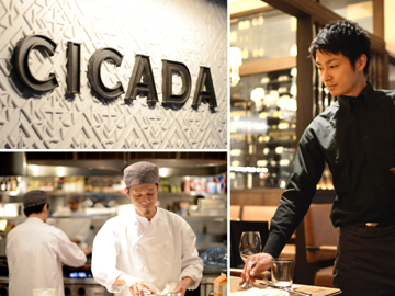 CICADA(表参道)のアルバイト情報
