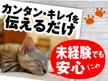 株式会社バックスグループ 仙台支店/13113のアルバイト情報