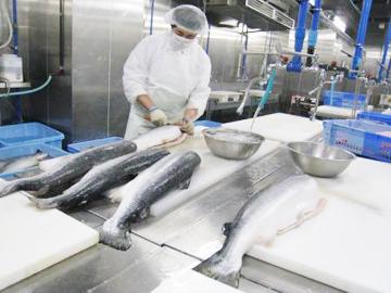 和歌山共和水産株式会社のアルバイト情報