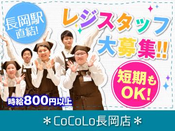 (株)ベルーフ CoCoLo長岡店のアルバイト情報