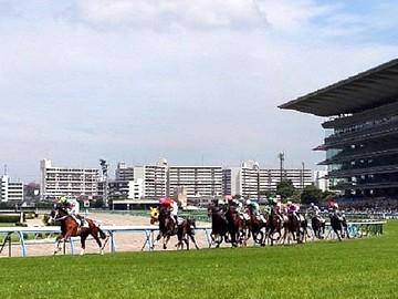 日本中央競馬会(JRA) 小倉競馬場のアルバイト情報
