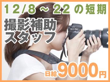株式会社ロムテックジャパンのアルバイト情報