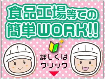 株式会社ジャパンプロスタッフ 札幌営業所のアルバイト情報