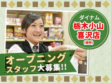 (株)ダイナム 栃木小山喜沢店(仮称) 【受付:416】のアルバイト情報