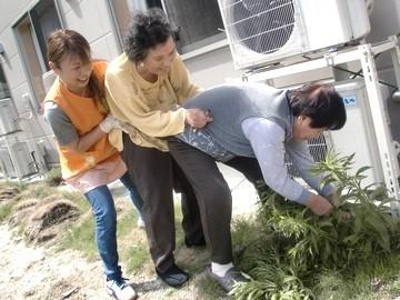 愛の家グループホーム大和西大寺(2358831)のアルバイト情報