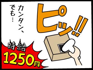 株式会社エイジス 東東京ディストリクト【AJ24】のアルバイト情報