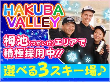 -HAKUBA VALLEY- つがいけ・はっぽう・いわたけ スキー場のアルバイト情報
