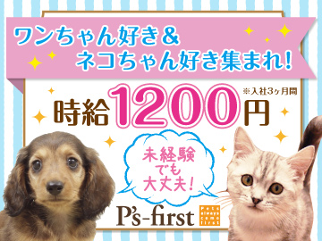 P's-first ペッツファーストのアルバイト情報