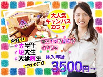 Chou  Chou  【新橋店】のアルバイト情報