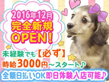 Girl's Bar SAMURAI〜サムライ〜☆2016年12月完全新規OPEN☆のアルバイト情報