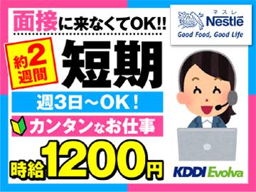株式会社KDDIエボルバ 九州・四国支社/IA018364のアルバイト情報