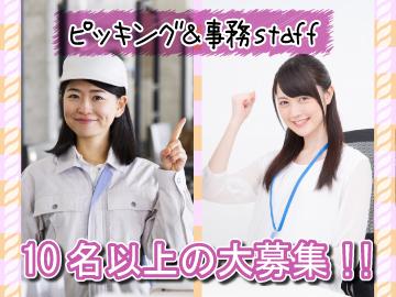 加藤憲G.R.S.株式会社 神戸西流通センターのアルバイト情報