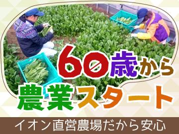 イオンアグリ創造株式会社 兵庫三木里脇農場のアルバイト情報
