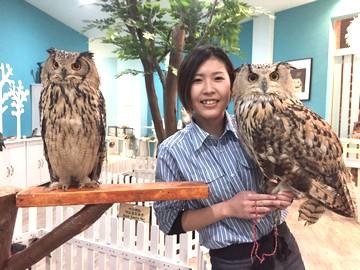 MOFFふれあい動物園 イオンモール徳島店のアルバイト情報