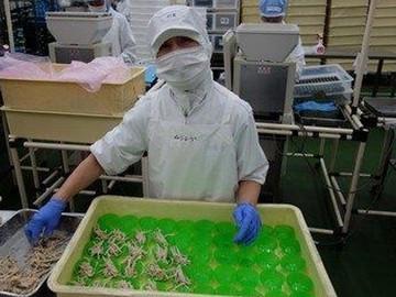 コープフーズ株式会社 石狩工場のアルバイト情報