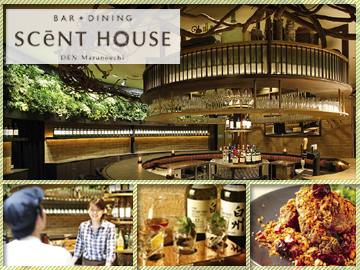 BAR+DINING SCeNT HOUSE(セントハウス) 他のアルバイト情報