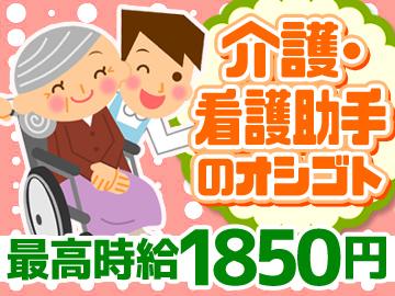 (株)ブレイブ MD事業部 東京・神奈川・埼玉合同/MD13のアルバイト情報
