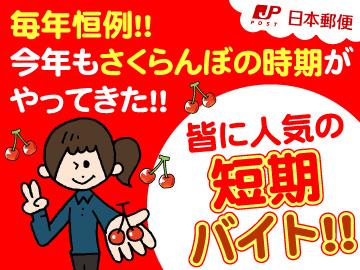 日本郵便<山形南・南陽・宮内・山辺・長崎>合同募集!のアルバイト情報