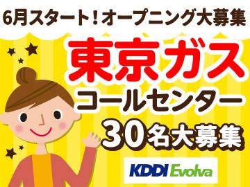 株式会社KDDIエボルバ/DA028600のアルバイト情報
