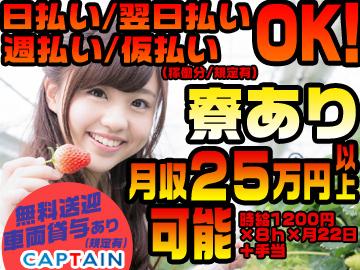 株式会社CAPTAIN(キャプテン)のアルバイト情報