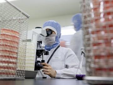 わらべや日洋株式会社 名古屋工場のアルバイト情報