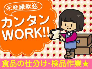 株式会社コダ運輸 東京営業所のアルバイト情報
