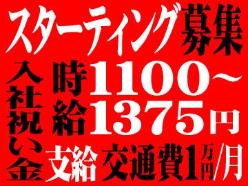 マックスアルファ(株) < 応募コード 7-30-0529 >のアルバイト情報