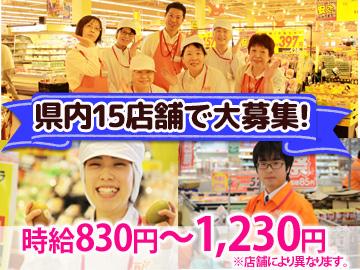 ザ・ビッグ 上田中央店 その他全15店舗募集のアルバイト情報