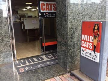 株式会社ウインドフラワー WILD CATSのアルバイト情報