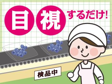 株式会社ガイアサイン 神戸支社のアルバイト情報