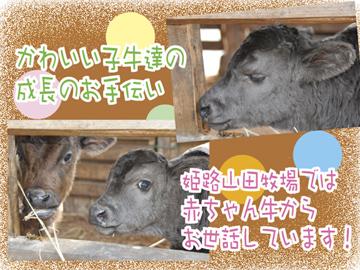 神戸畜産(株) 和歌山牧場/姫路山田牧場・日野分場のアルバイト情報