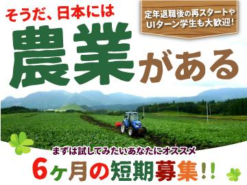 イオンアグリ創造株式会社 大分九重農場のアルバイト情報