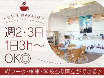 CAFE MAHALO (株)マハロコーポレーションのアルバイト情報