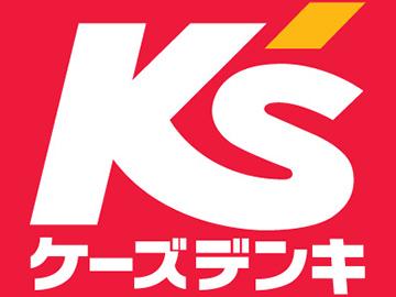 (株)ケーズホールディングス ケーズデンキ30店舗合同募集のアルバイト情報