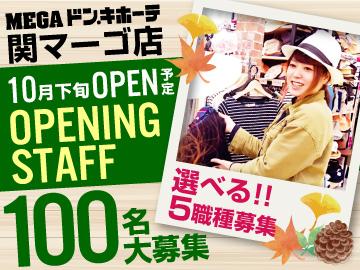 MEGAドン・キホーテ 関マーゴ店/457のアルバイト情報