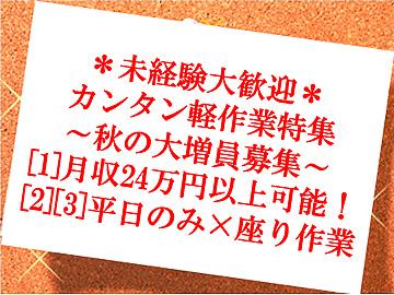 (株)ASK(エーエスケー) 土浦サテライト/お仕事No.31-521のアルバイト情報