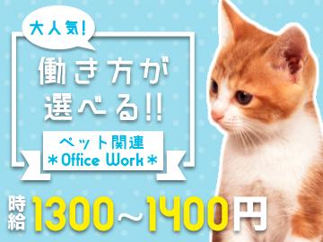 株式会社プラスアルファ 新宿支店<応募コード 10-F2-3>のアルバイト情報