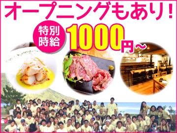 だいあん/節/よっぱらい/鉄板バルJyu-堺東・高槻合同募集のアルバイト情報