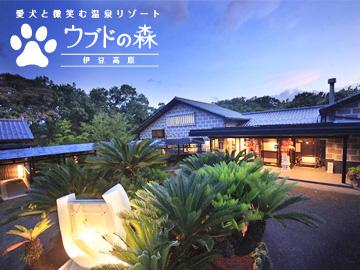 愛犬と微笑む温泉リゾート ウブドの森 伊豆高原のアルバイト情報