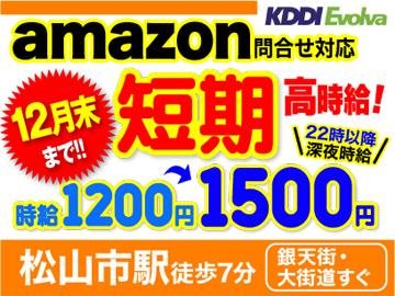 株式会社KDDIエボルバ 松山センター/HA016545のアルバイト情報