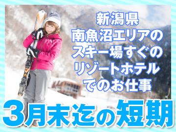 <<12/1〜3/31の短期>>天然雪100%!新潟のスキー場でリゾートバイト【宿泊施設完備★無料】