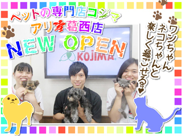 ペットの専門店コジマ アリオ葛西店のアルバイト情報